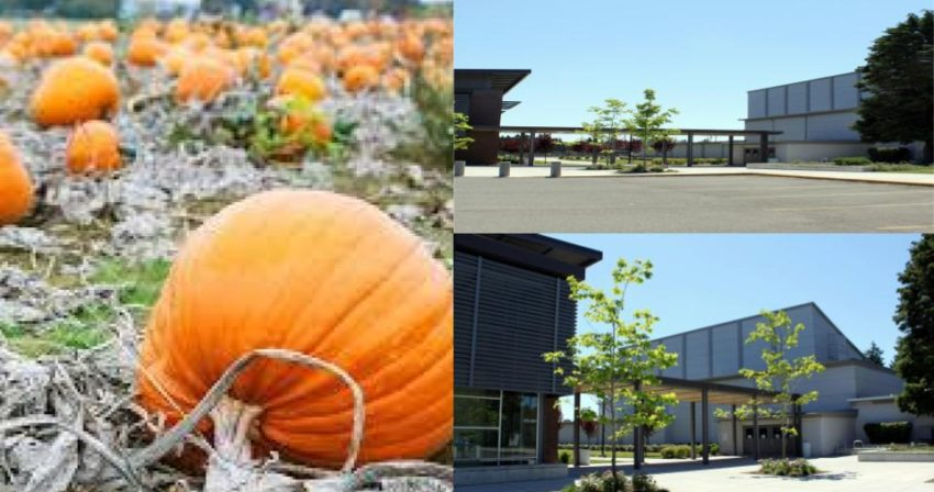 Fall Pumpkins and view of school